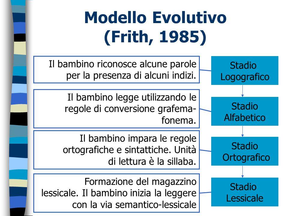 Modello Evolutivo (Frith, 1985) Stadio Logografico Stadio Alfabetico Stadio Ortografico Stadio Lessicale Il bambino riconosce alcune parole per la pre
