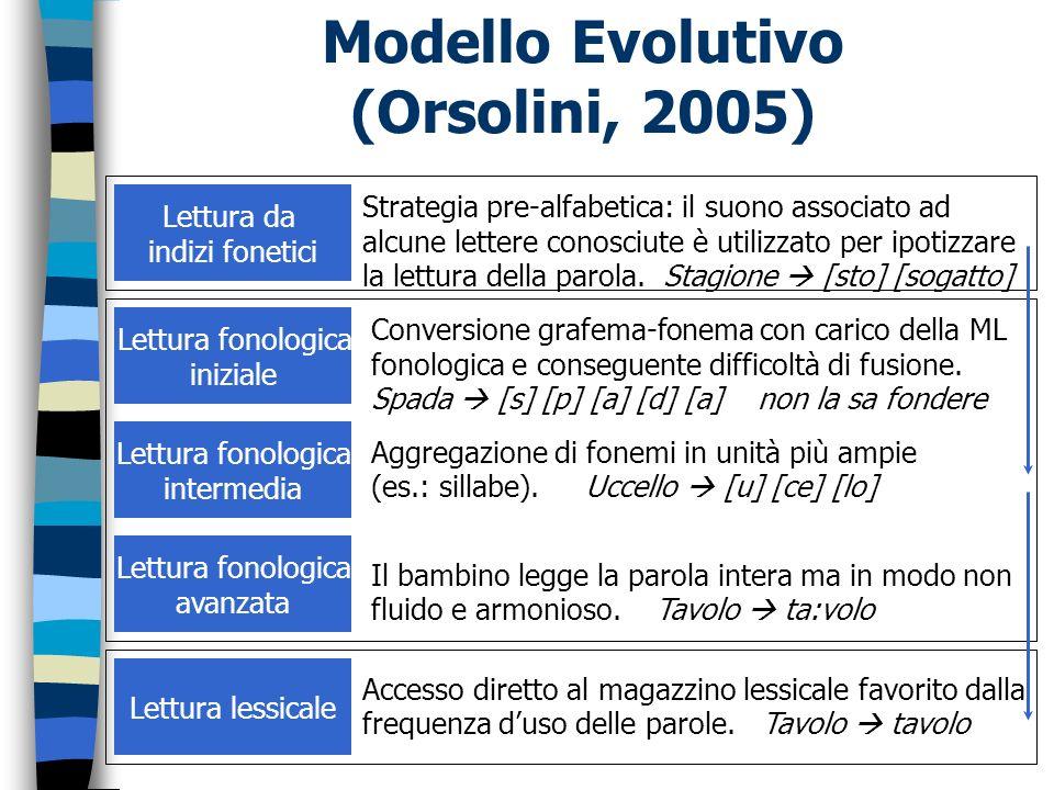 Modello Evolutivo (Orsolini, 2005) Lettura da indizi fonetici Strategia pre-alfabetica: il suono associato ad alcune lettere conosciute è utilizzato p