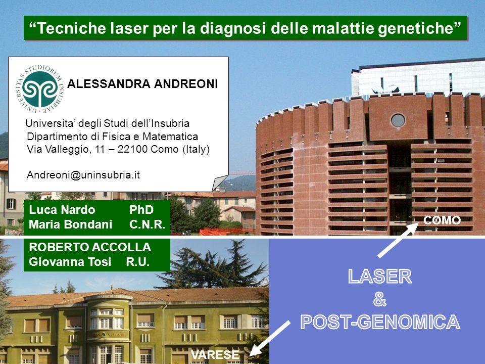 ALESSANDRA ANDREONI Universita degli Studi dellInsubria Dipartimento di Fisica e Matematica Via Valleggio, 11 – 22100 Como (Italy) Andreoni@uninsubria