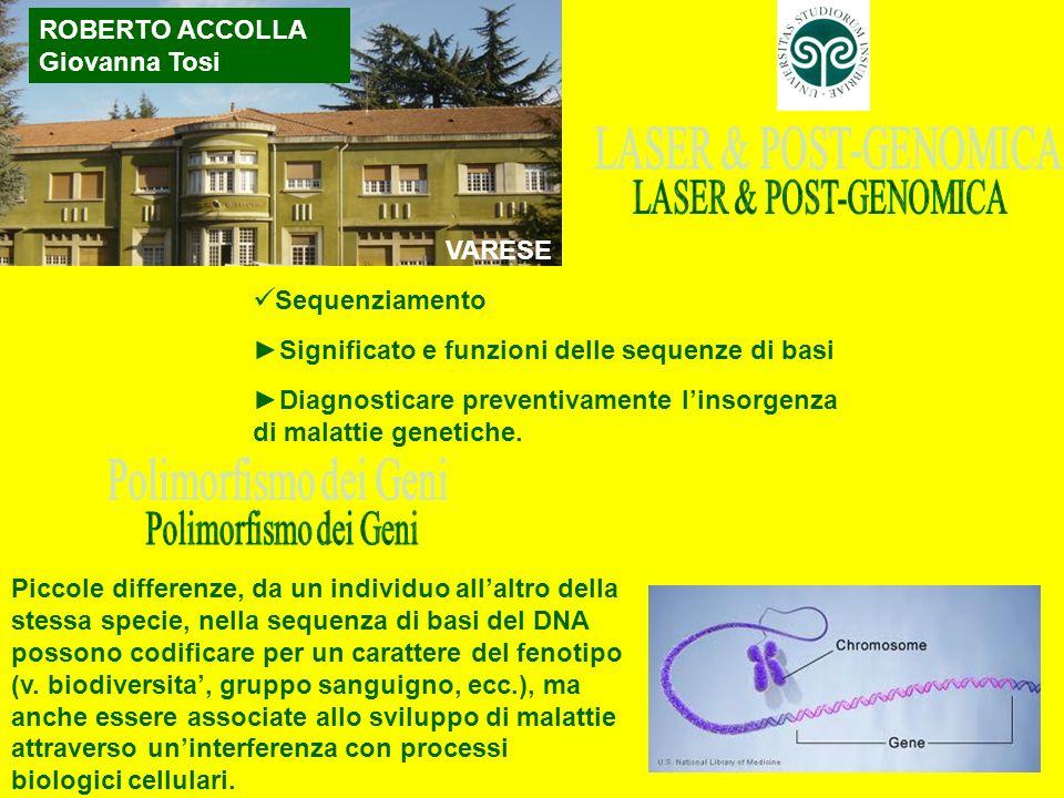 ROBERTO ACCOLLA Giovanna Tosi VARESE Sequenziamento Significato e funzioni delle sequenze di basi Diagnosticare preventivamente linsorgenza di malatti