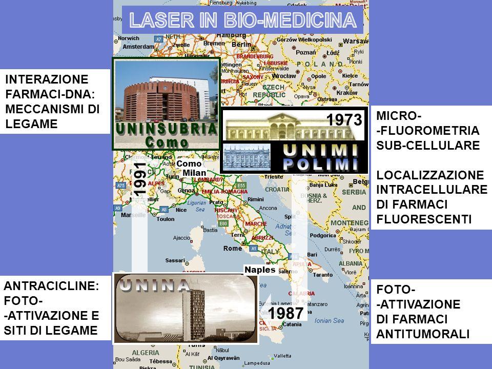 Como Milan 1987 1991 1973 MICRO- -FLUOROMETRIA SUB-CELLULARE LOCALIZZAZIONE INTRACELLULARE DI FARMACI FLUORESCENTI FOTO- -ATTIVAZIONE DI FARMACI ANTIT