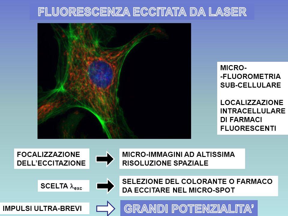 MICRO- -FLUOROMETRIA SUB-CELLULARE LOCALIZZAZIONE INTRACELLULARE DI FARMACI FLUORESCENTI MICRO-IMMAGINI AD ALTISSIMA RISOLUZIONE SPAZIALE FOCALIZZAZIO