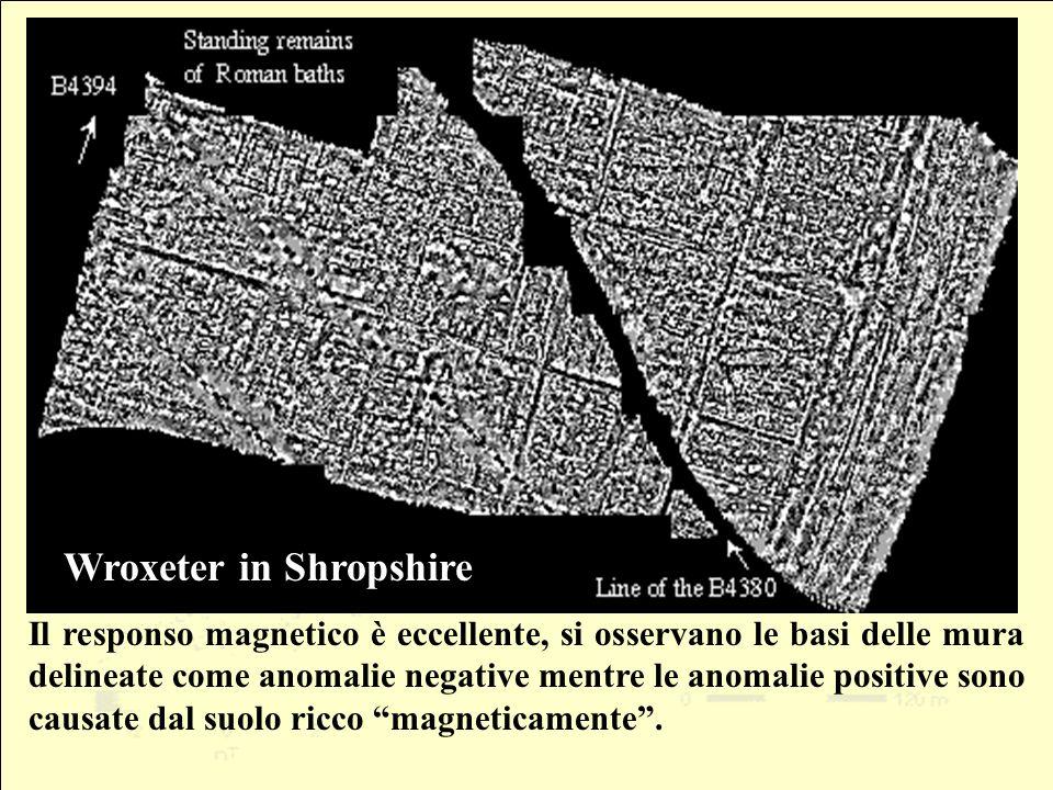 Il responso magnetico è eccellente, si osservano le basi delle mura delineate come anomalie negative mentre le anomalie positive sono causate dal suol