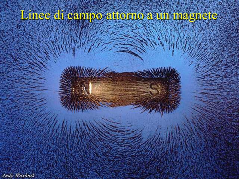 Linee di campo attorno a un magnete