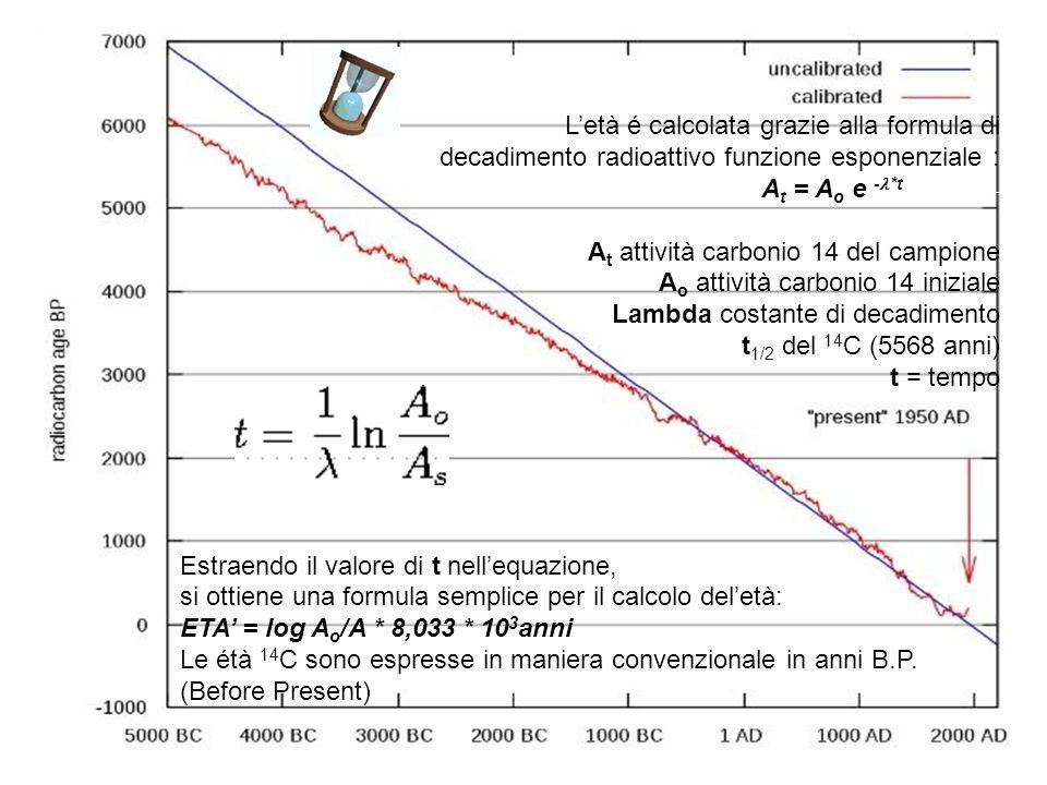 Letà é calcolata grazie alla formula di decadimento radioattivo funzione esponenziale : A t = A o e - *t__________ A t attività carbonio 14 del campio