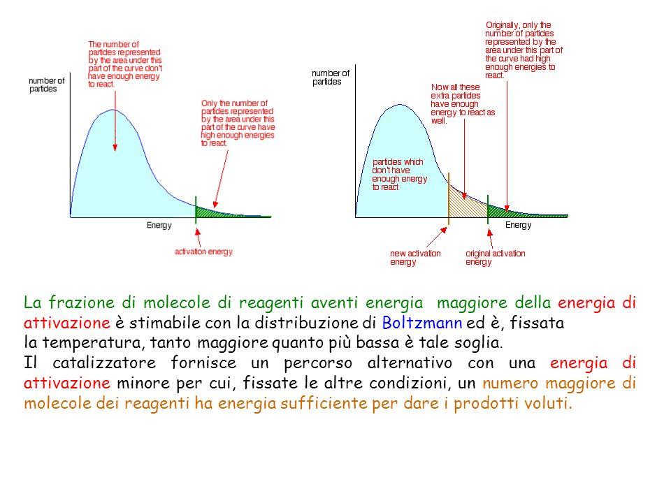 La frazione di molecole di reagenti aventi energia maggiore della energia di attivazione è stimabile con la distribuzione di Boltzmann ed è, fissata l