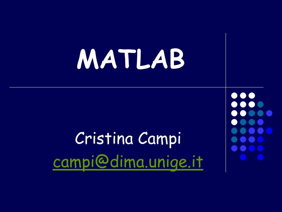 MATLAB Cristina Campi campi@dima.unige.it