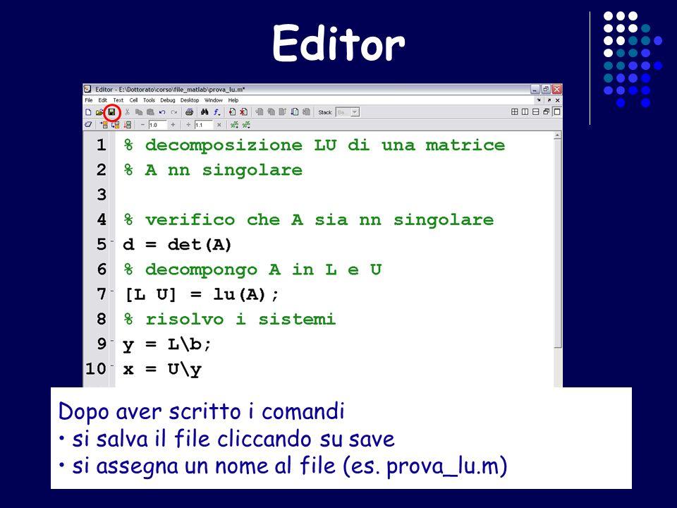 Editor Dopo aver scritto i comandi si salva il file cliccando su save si assegna un nome al file (es. prova_lu.m)