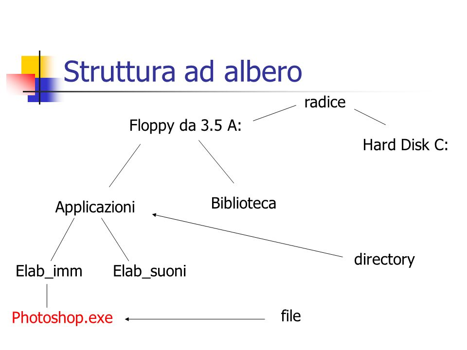 Floppy da 3.5 A: Applicazioni Biblioteca Elab_immElab_suoni Photoshop.exe file directory radice Hard Disk C: