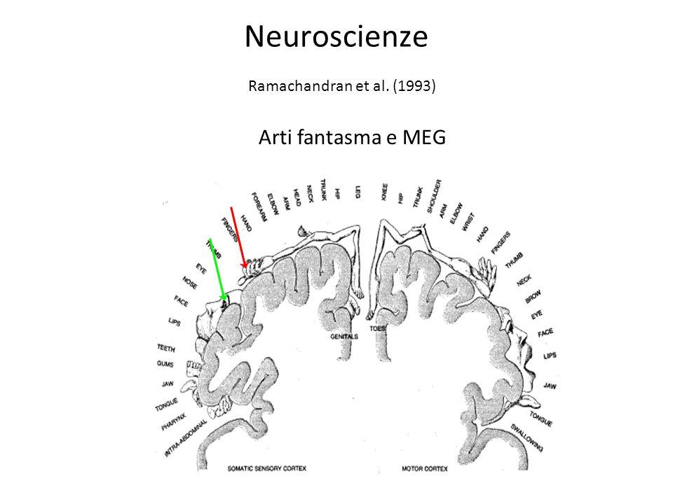 Ramachandran et al. (1993) Arti fantasma e MEG Neuroscienze