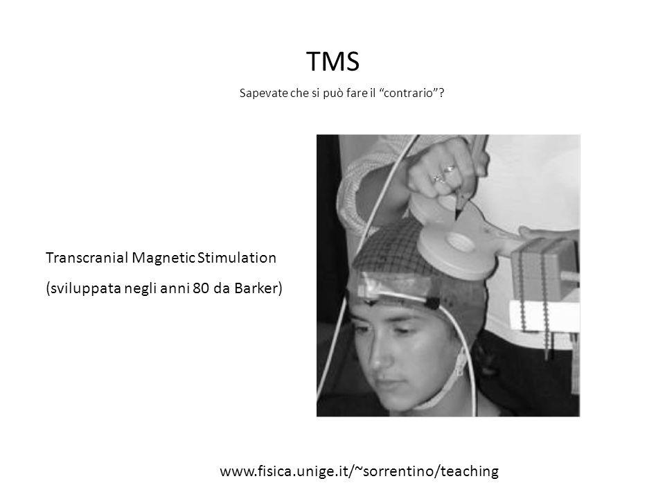 TMS Sapevate che si può fare il contrario? Transcranial Magnetic Stimulation (sviluppata negli anni 80 da Barker) www.fisica.unige.it/~sorrentino/teac