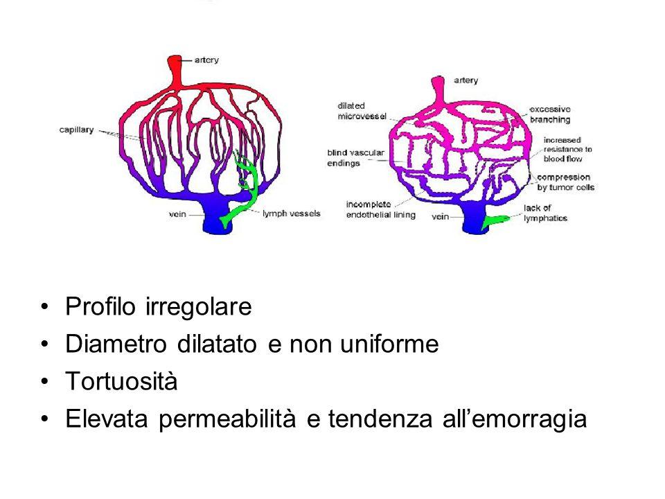 Condizioni al contorno Le prime due condizioni si trovano ponendo la pressione in a dopo la deformazione uguale alla pressione dinfusione e la pressione in R al margine del tumore dopo la deformazione uguale a zero.