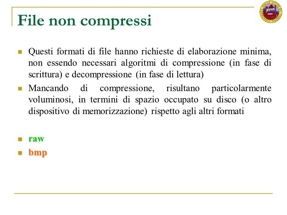 File non compressi Questi formati di file hanno richieste di elaborazione minima, non essendo necessari algoritmi di compressione (in fase di scrittur