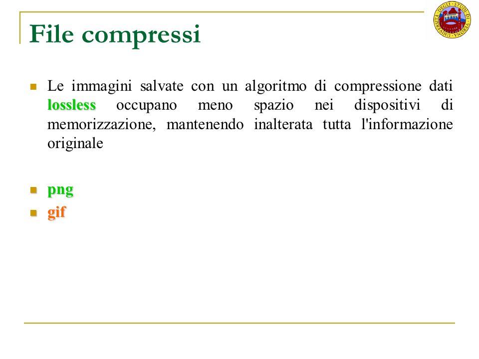File compressi lossless Le immagini salvate con un algoritmo di compressione dati lossless occupano meno spazio nei dispositivi di memorizzazione, man