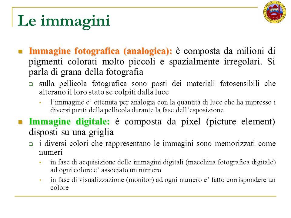 Le immagini Immagine fotografica (analogica): Immagine fotografica (analogica): è composta da milioni di pigmenti colorati molto piccoli e spazialment