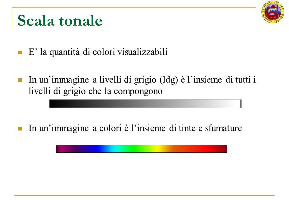Scala tonale E la quantità di colori visualizzabili In unimmagine a livelli di grigio (ldg) è linsieme di tutti i livelli di grigio che la compongono