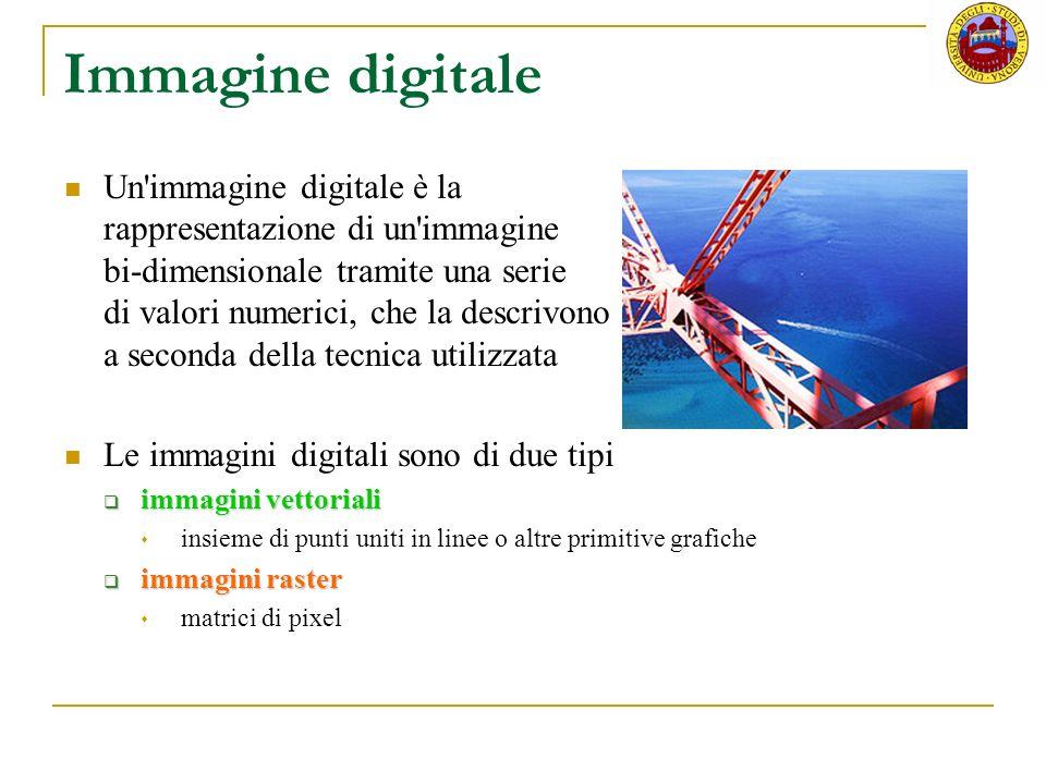 Immagine digitale Un'immagine digitale è la rappresentazione di un'immagine bi-dimensionale tramite una serie di valori numerici, che la descrivono a