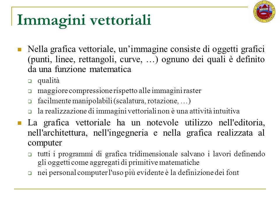 Immagini vettoriali Nella grafica vettoriale, unimmagine consiste di oggetti grafici (punti, linee, rettangoli, curve, …) ognuno dei quali è definito