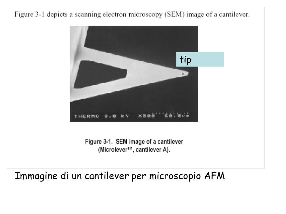 Immagine di un cantilever per microscopio AFM tip