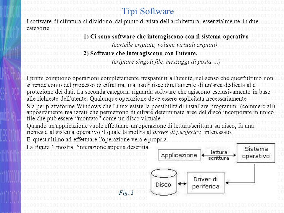Software che interagiscono col sistema operativo I software di cifratura creano un unità disco virtuale la quale viene simulata tramite un file cifrato che risiede su un dispositivo di memoria di massa.