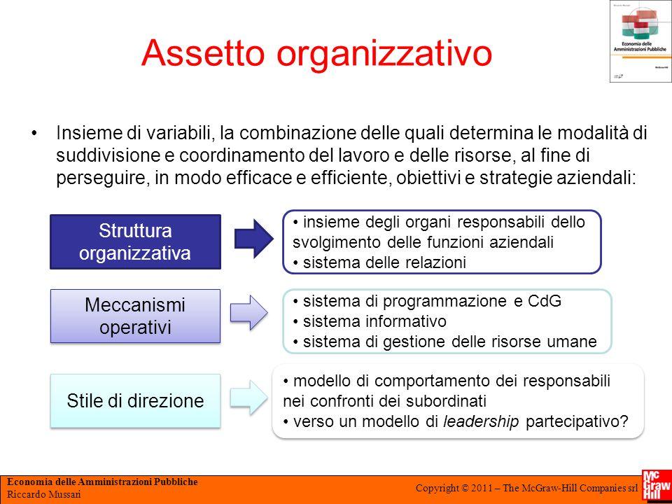 Economia delle Amministrazioni Pubbliche Riccardo Mussari Copyright © 2011 – The McGraw-Hill Companies srl Assetto organizzativo Insieme di variabili,