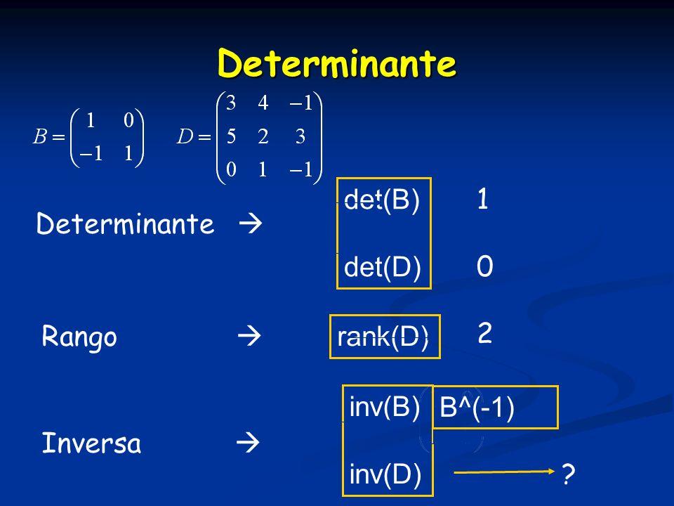 Determinante Determinante det(B) det(D) 1010 Inversa inv(B) inv(D) Rango rank(D) 2 ? B^(-1)