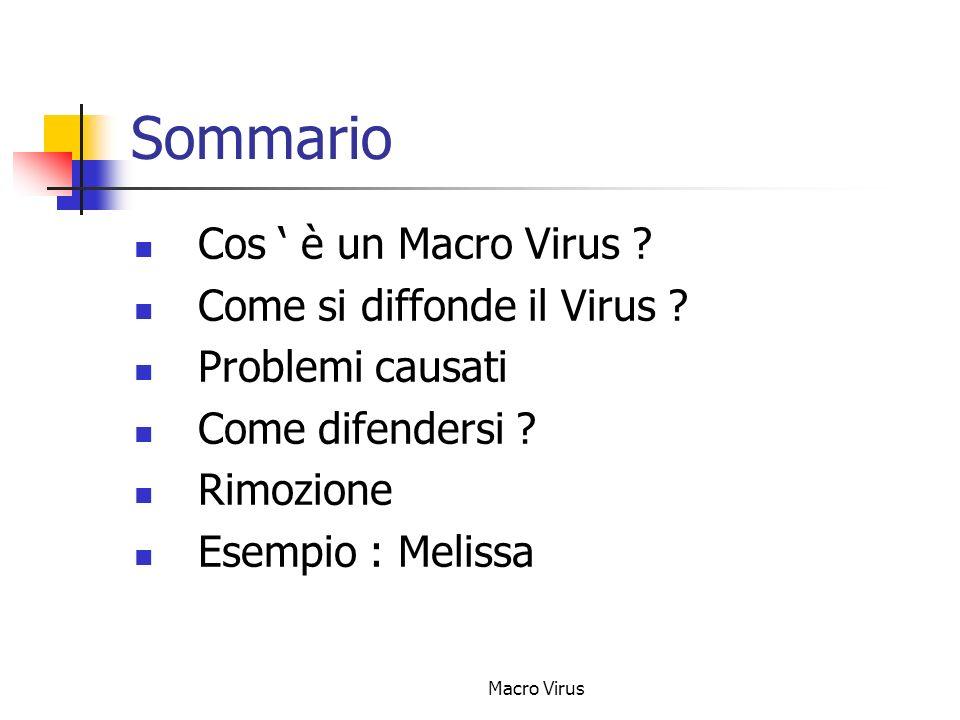 Macro Virus Sommario Cos è un Macro Virus .Come si diffonde il Virus .