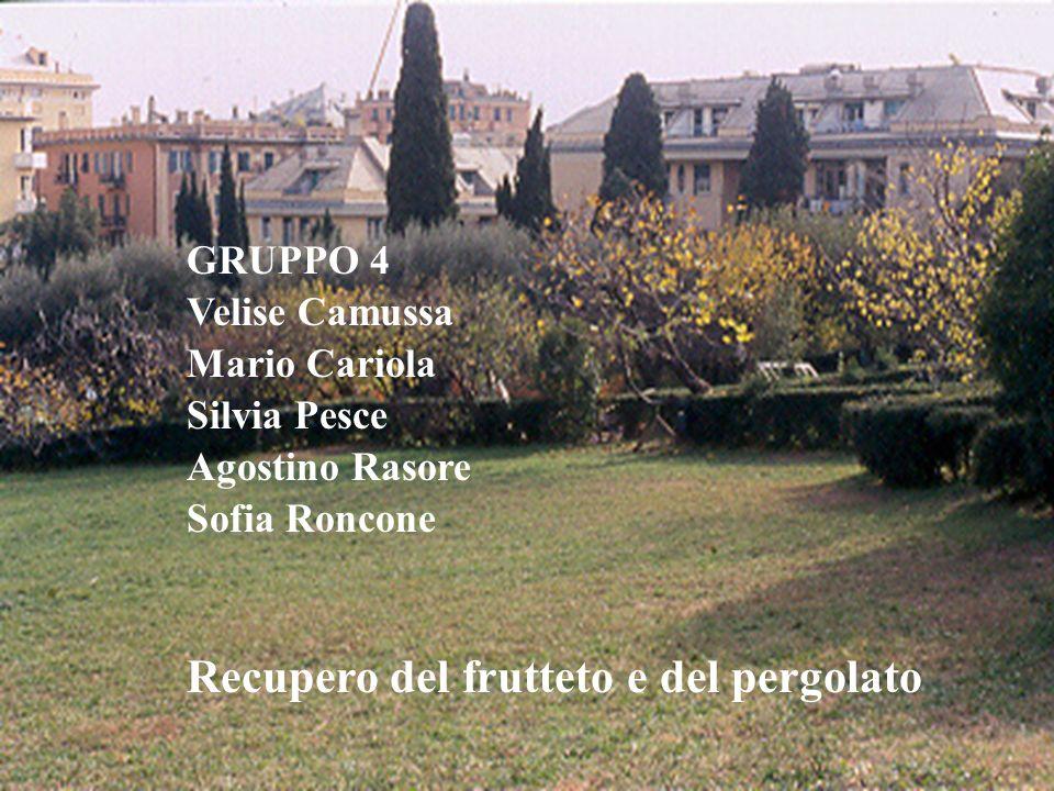GRUPPO 4 Velise Camussa Mario Cariola Silvia Pesce Agostino Rasore Sofia Roncone Recupero del frutteto e del pergolato