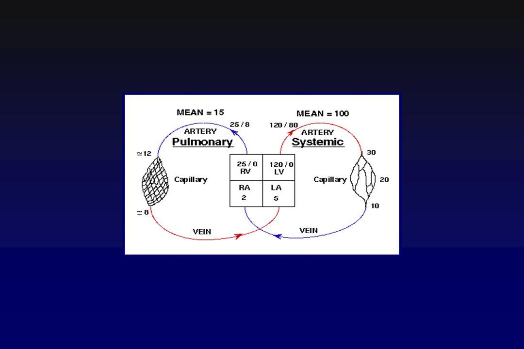 Modificazioni dell emodinamica polmonare Ipertensione precapillare: -Ridotto letto vascolare -Broncocostrizione -Vasocostrizione arteriolare Sviluppo di vasi collaterali: -Shunt polmonari artero-venosi Modificazioni del flusso sanguigno: -Ridistribuzione del flusso Modificazioni del circolo sistemico e della funzione cardiaca -Ipotensione arteriosa -Tachicardia -Sovraccarico del ventricolo Dx -Aumento della pressione venosa centrale Modificazioni del circolo coronarico -Ridotto gradiente pressorio transcoronarico -Ipotensione aortica -Ipertensione striale Dx -Ipoperfusione miocardica