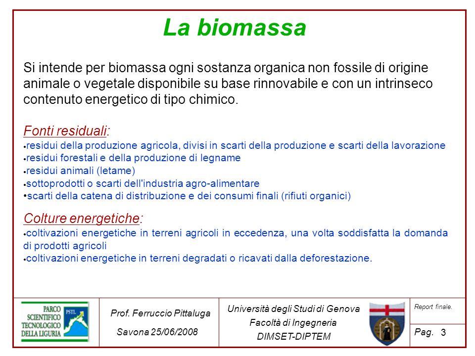 La caratterizzazione è stata effettuata su di una popolazione parziale di biocombustibile.