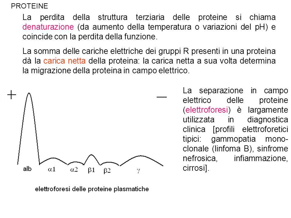 La perdita della struttura terziaria delle proteine si chiama denaturazione (da aumento della temperatura o variazioni del pH) e coincide con la perdi