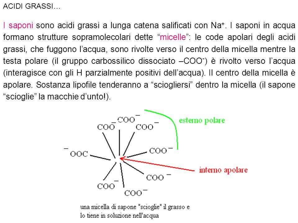 I saponi sono acidi grassi a lunga catena salificati con Na +. I saponi in acqua formano strutture sopramolecolari dette micelle: le code apolari degl