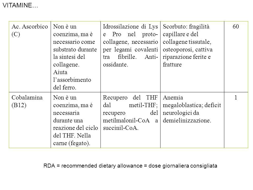 Ac. Ascorbico (C) Non è un coenzima, ma è necessario come substrato durante la sintesi del collagene. Aiuta lassorbimento del ferro. Idrossilazione di