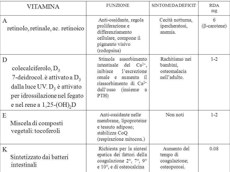VITAMINA FUNZIONESINTOMI DA DEFICITRDA mg A retinolo, retinale, ac. retinoico Anti-ossidante, regola proliferazione e differenziamento cellulare, comp