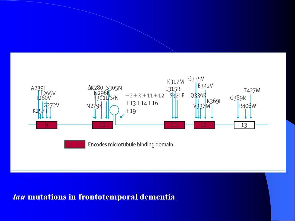 tau mutations in frontotemporal dementia