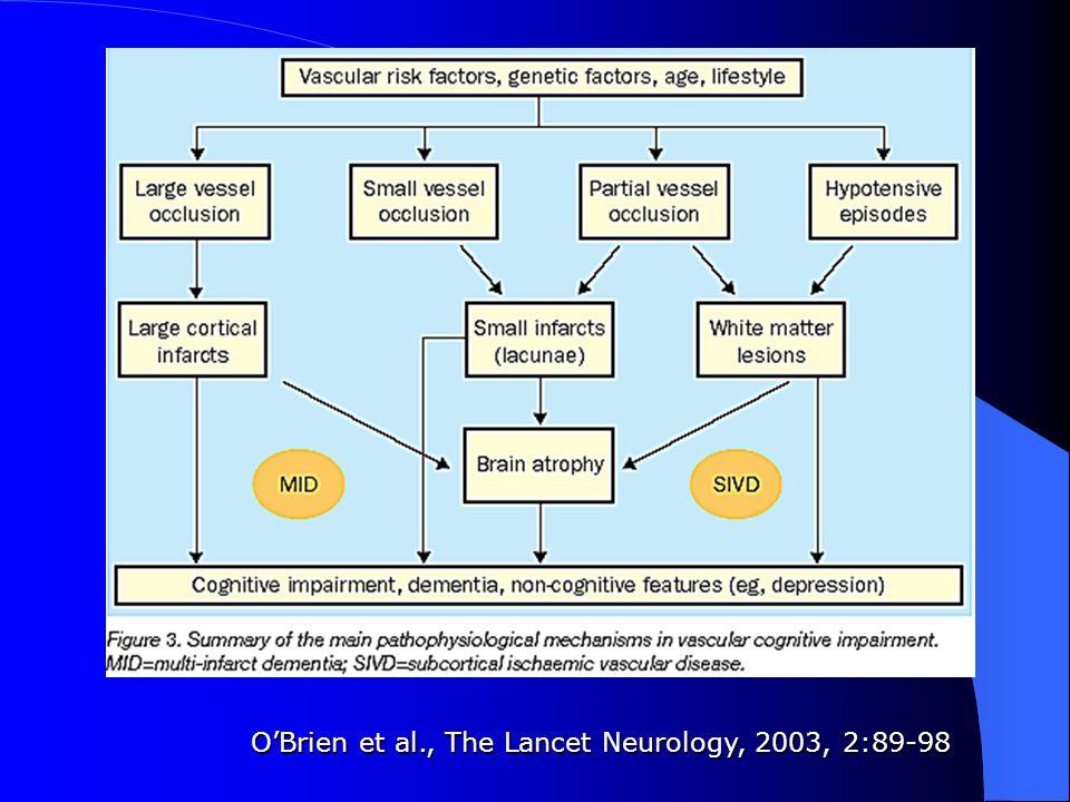 OBrien et al., The Lancet Neurology, 2003, 2:89-98