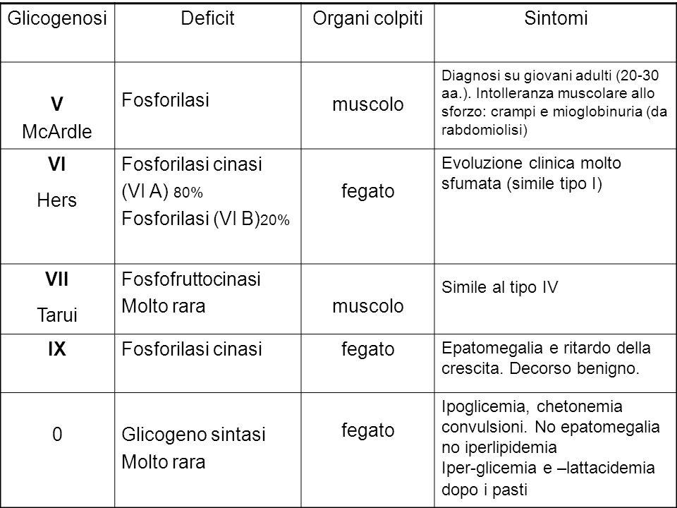 GlicogenosiDeficitOrgani colpitiSintomi V McArdle Fosforilasi muscolo Diagnosi su giovani adulti (20-30 aa.). Intolleranza muscolare allo sforzo: cram