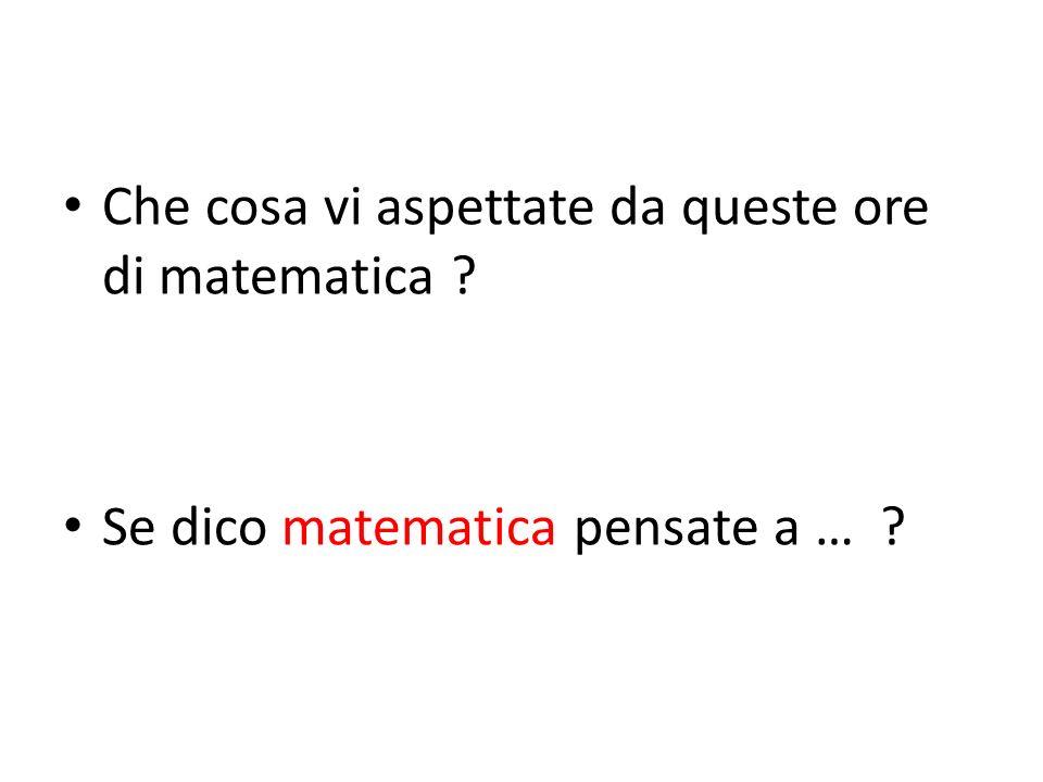 LIdea per il modulo Possiamo chiederci e … provare a dare alcune risposte Che cosa è la matematica .