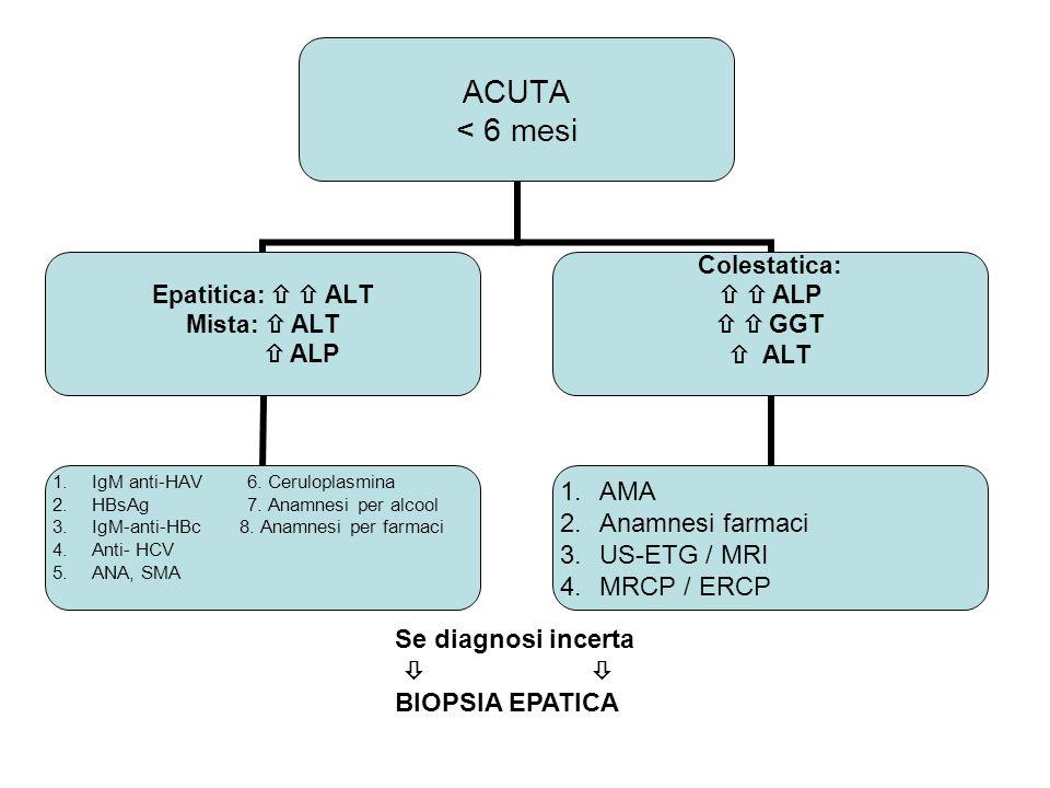 ACUTA < 6 mesi Epatitica: ALT Mista: ALT ALP 1.IgM anti-HAV 6. Ceruloplasmina 2.HBsAg 7. Anamnesi per alcool 3.IgM-anti-HBc 8. Anamnesi per farmaci 4.