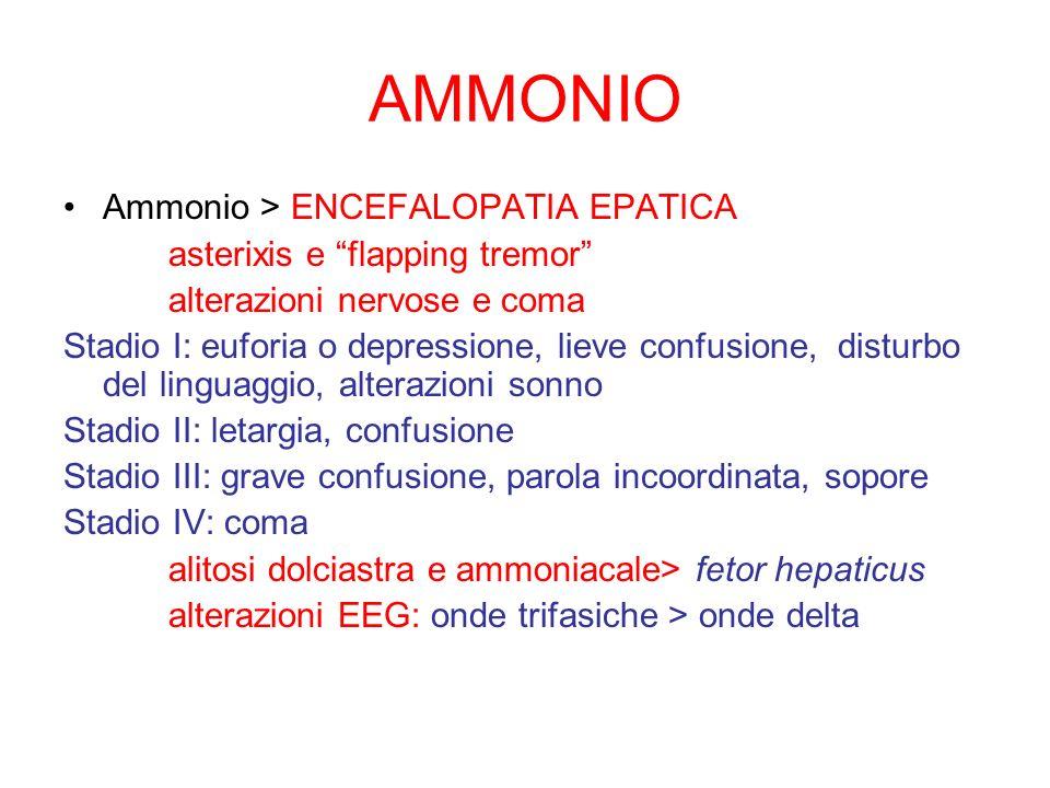 AMMONIO Ammonio > ENCEFALOPATIA EPATICA asterixis e flapping tremor alterazioni nervose e coma Stadio I: euforia o depressione, lieve confusione, dist
