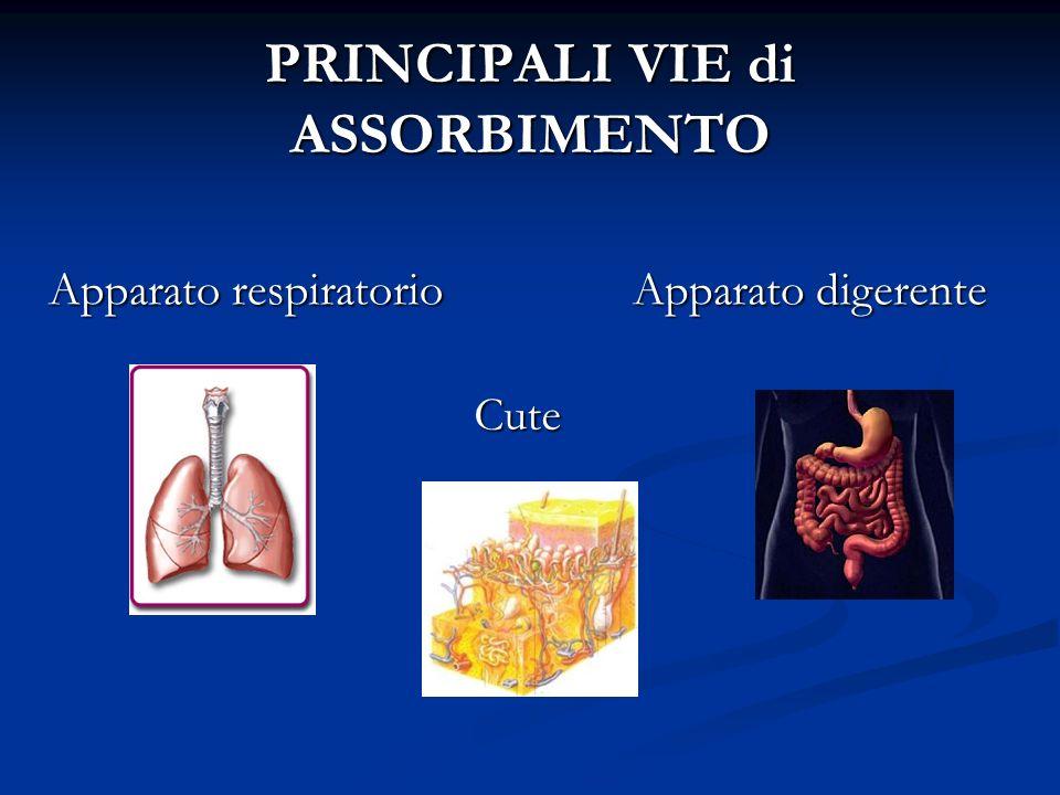 PRINCIPALI VIE di ASSORBIMENTO Apparato respiratorio Apparato digerente Cute