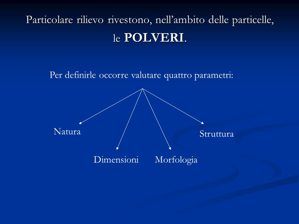 Particolare rilievo rivestono, nellambito delle particelle, le POLVERI. Per definirle occorre valutare quattro parametri: Natura DimensioniMorfologia