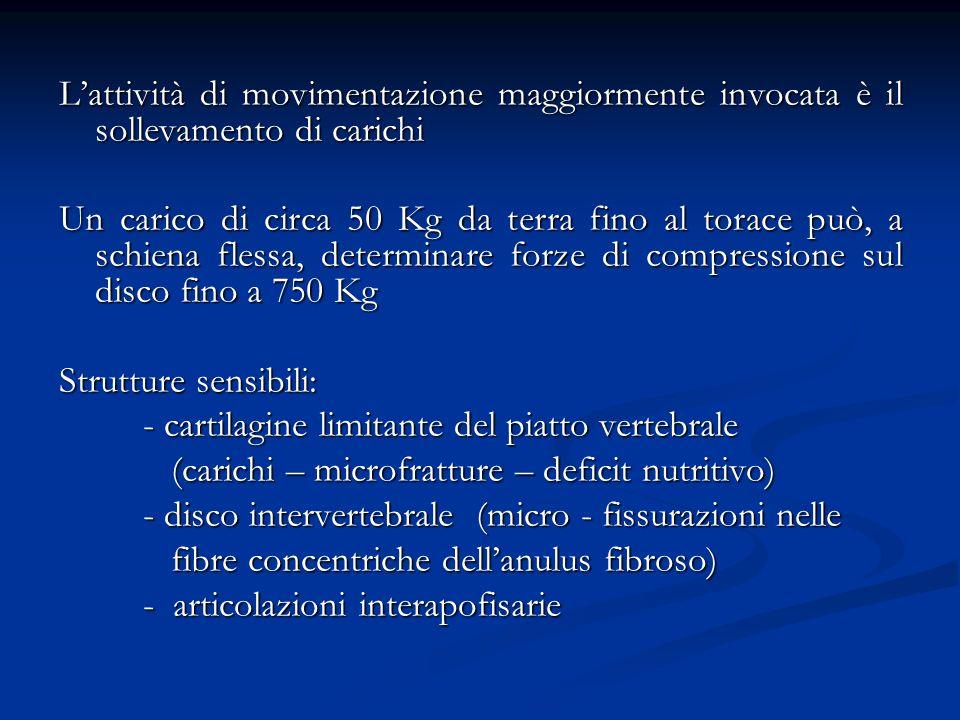 Lattività di movimentazione maggiormente invocata è il sollevamento di carichi Un carico di circa 50 Kg da terra fino al torace può, a schiena flessa,