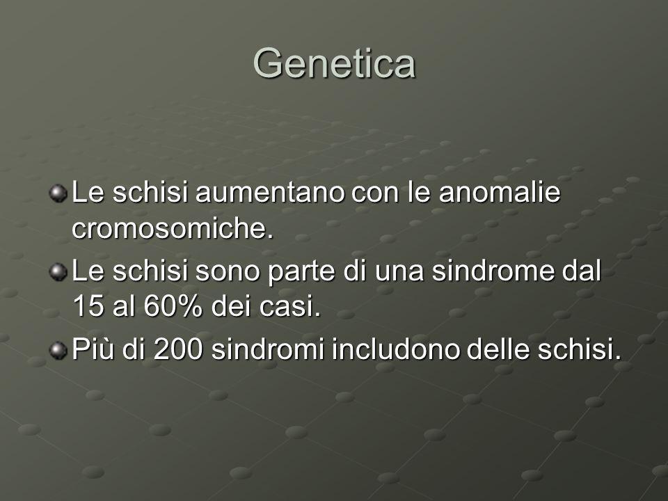 Genetica Le schisi aumentano con le anomalie cromosomiche. Le schisi sono parte di una sindrome dal 15 al 60% dei casi. Più di 200 sindromi includono
