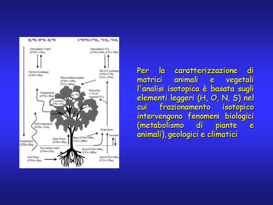Per la caratterizzazione di matrici animali e vegetali l analisi isotopica è basata sugli elementi leggeri (H, O, N, S) nel cui frazionamento isotopico intervengono fenomeni biologici (metabolismo di piante e animali), geologici e climatici