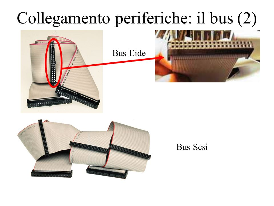 Collegamento periferiche: il bus (2) Bus Eide Bus Scsi
