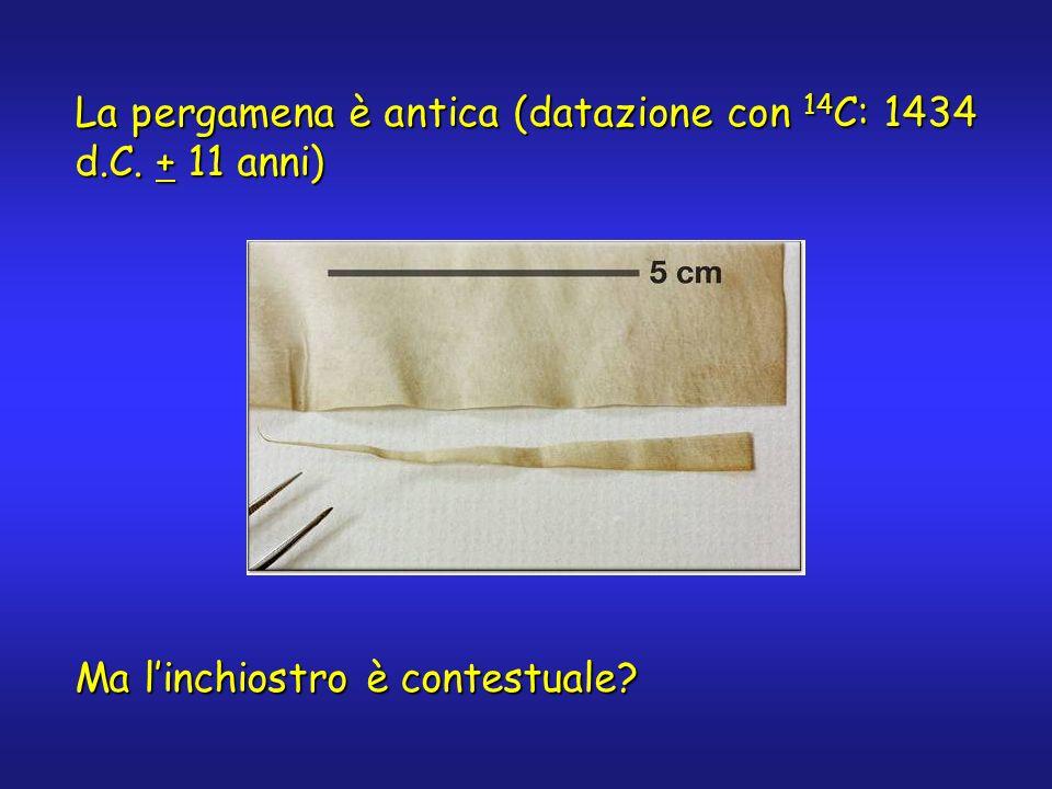 La pergamena è antica (datazione con 14 C: 1434 d.C. + 11 anni) Ma linchiostro è contestuale