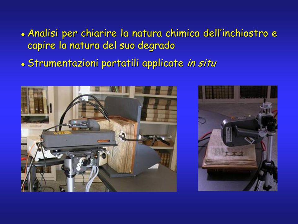 Analisi per chiarire la natura chimica dellinchiostro e capire la natura del suo degrado Analisi per chiarire la natura chimica dellinchiostro e capir
