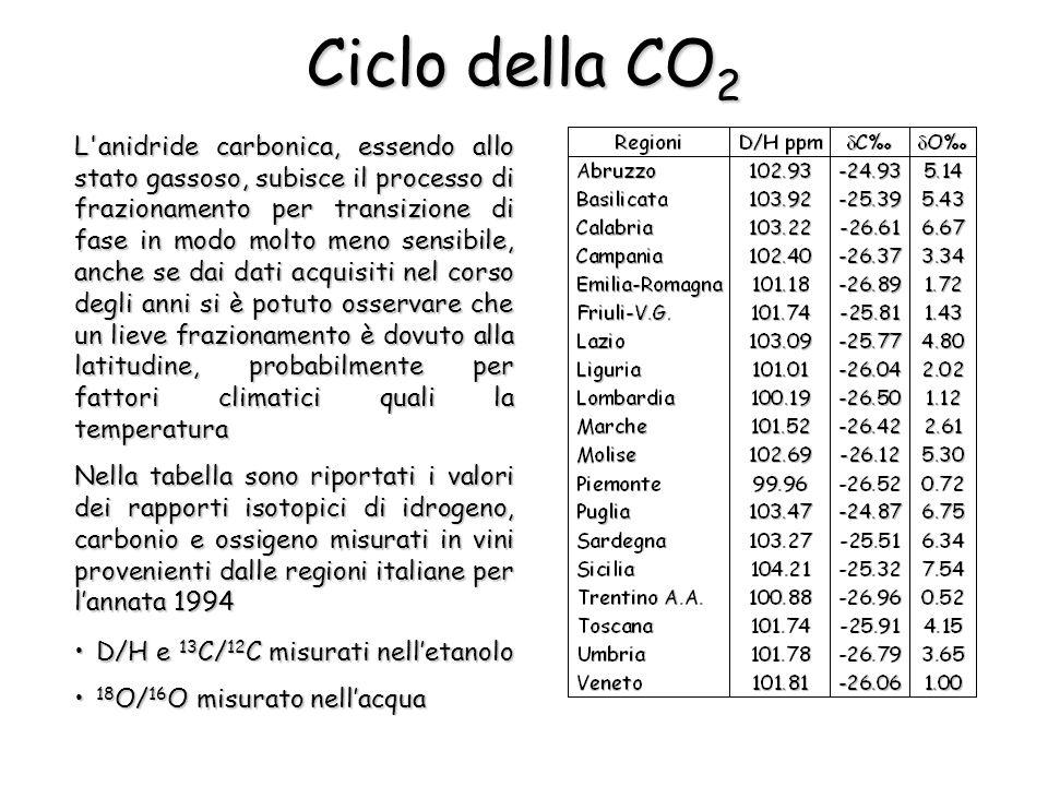 Ciclo della CO 2 L anidride carbonica, essendo allo stato gassoso, subisce il processo di frazionamento per transizione di fase in modo molto meno sensibile, anche se dai dati acquisiti nel corso degli anni si è potuto osservare che un lieve frazionamento è dovuto alla latitudine, probabilmente per fattori climatici quali la temperatura Nella tabella sono riportati i valori dei rapporti isotopici di idrogeno, carbonio e ossigeno misurati in vini provenienti dalle regioni italiane per lannata 1994 D/H e 13 C/ 12 C misurati nelletanoloD/H e 13 C/ 12 C misurati nelletanolo 18 O/ 16 O misurato nellacqua 18 O/ 16 O misurato nellacqua