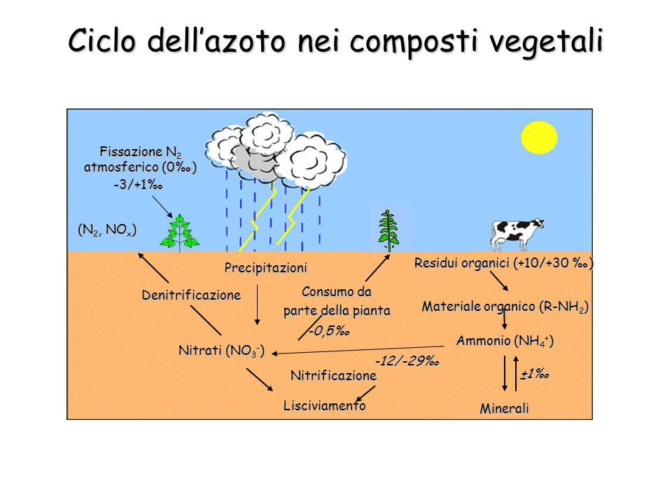 (N 2, NO x ) (N 2, NO x ) Denitrificazione Residui organici (+10/+30 ) Ammonio (NH 4 + ) Materiale organico (R-NH 2 ) Nitrati (NO 3 - ) Consumo da parte della pianta Minerali Lisciviamento Precipitazioni Fissazione N 2 atmosferico (0) -3/+1 -0,5 ±1 Nitrificazione -12/-29 Ciclo dellazoto nei composti vegetali